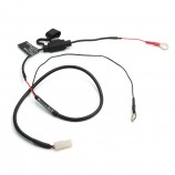 5600-2A  2pin to 11.9*6.73mm O-ring with 2A fuse customized cable